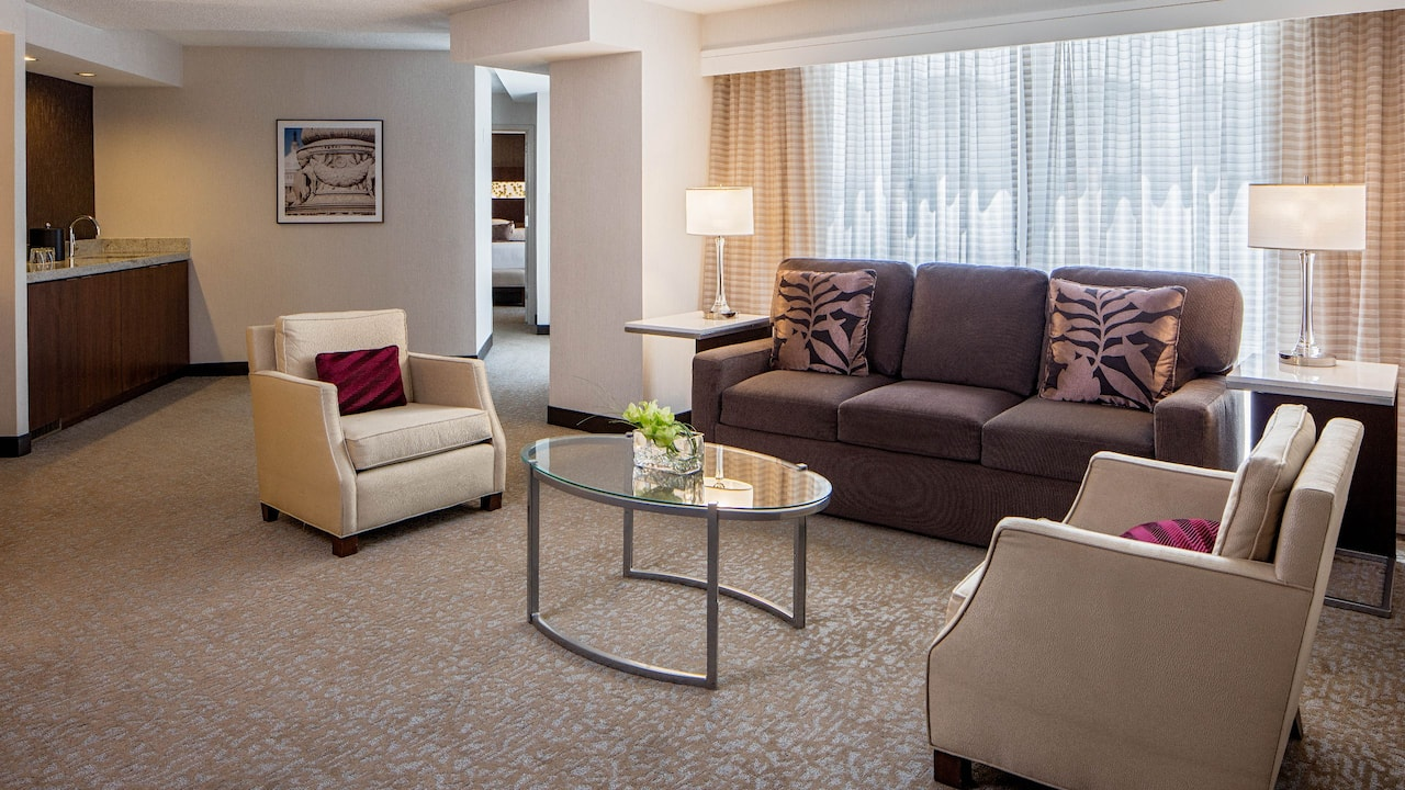 Executive Suite Living Space
