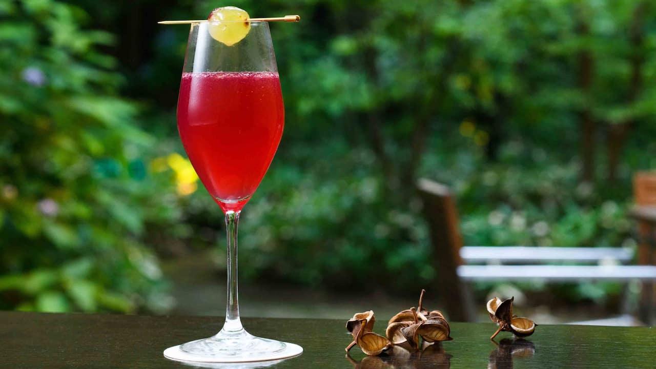 Hyatt Regency Hakone Resort & Spa| Living Room Amazing Red Sky Mocktail