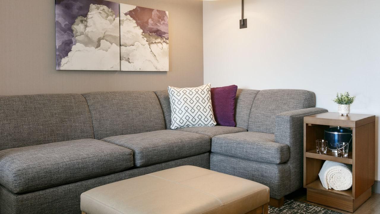 King Guestroom Sofa Sleeper